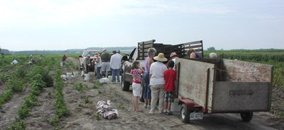 Gleaning 2011